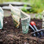 Emelia Mensa EA, CPA, CGMA's First Key To Building Wealth