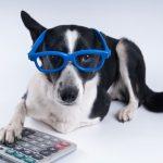 Emelia Mensa EA, CPA, CGMA's Under-Utilized Pet Tax Deductions